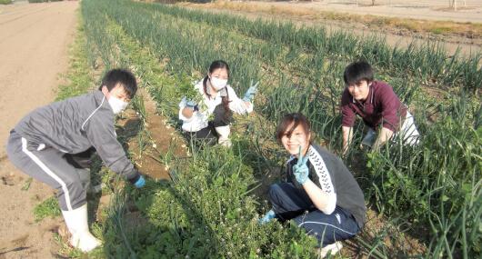農業体験で知る、食材の大切さ。